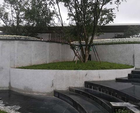 重庆异形水磨石花台施工案例